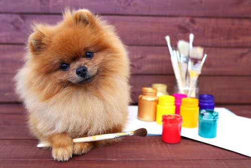 犬のイラストがたまらなく可愛いい~~!