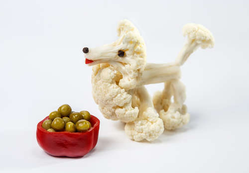 白いブロッコリー!? カリフラワーは犬に食べさせても良いの?