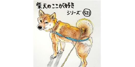 【柴犬のここが好きシリーズ!】柴犬の好きな所を描いたイラストが、柴犬愛好家のツボを刺激しまくる♡