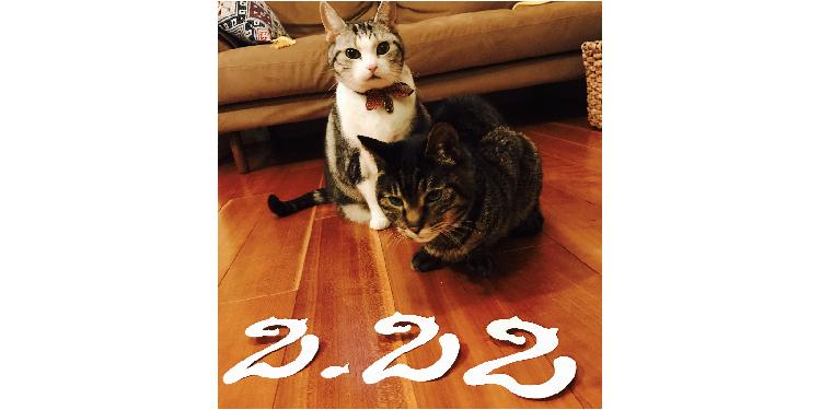 2月22日は『ねこの日』! 愛猫に日頃の感謝を伝える、様々なお祝い方法をあつめました♫(7選)