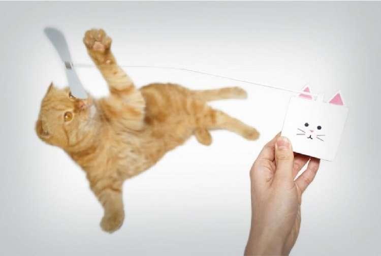 ネコちゃんが自分で遊べる! スマートネコじゃらし「CatchCats」でもっと楽しい毎日を♪