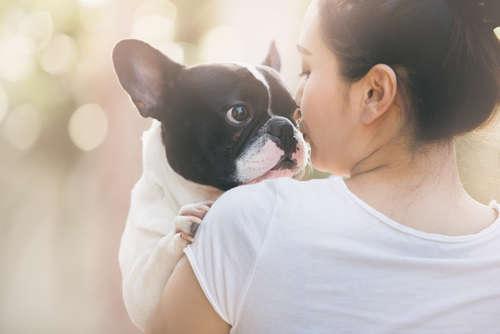 ワンちゃんの口臭気になりませんか?「息さわやか歯磨き講座&愛犬Hug撮影会」の開催が決定!
