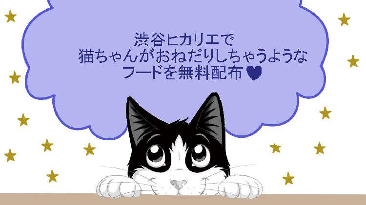 """PECO NEKO館イベントで無料でもらえちゃう♡ 猫ちゃんが""""おねだり""""するフードとは?"""