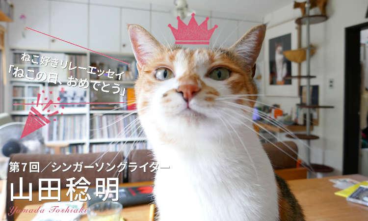 【ねこ好きリレーエッセイ】毎日が猫の日