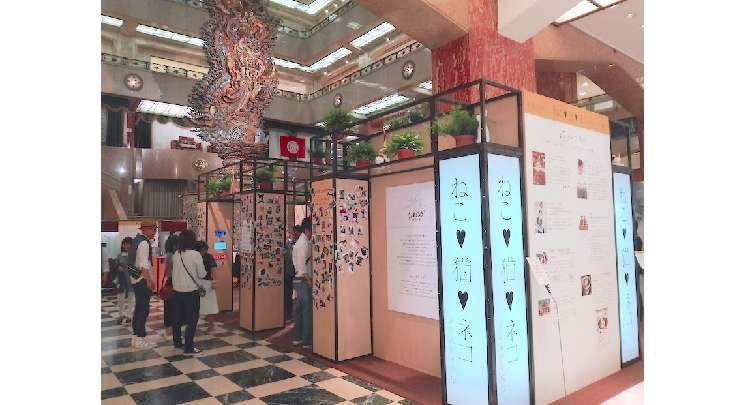 【イベントレポート☆】日本橋三越で開催中の「PECO NEKO館」最新情報まとめ♪