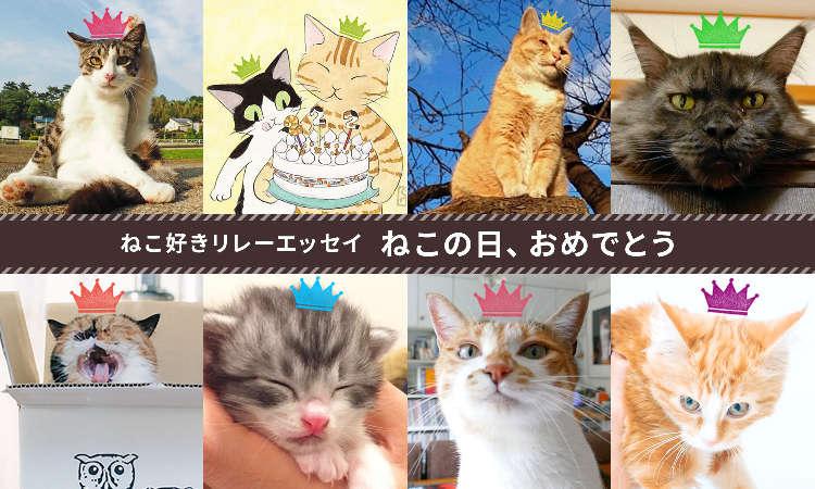 【ねこ好きリレーエッセイ】ねこ好きたちに、おめでとう!