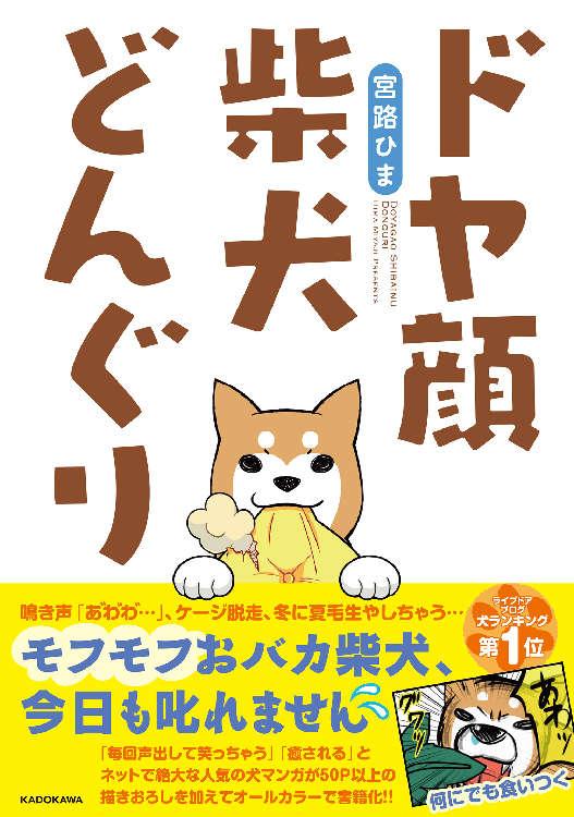 『ドヤ顔柴犬どんぐり』宮路ひま (著)