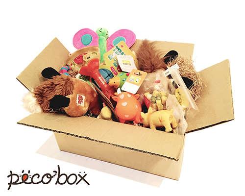 『PECO BOX 』販売開始♡ 愛犬へのプレゼントに♪