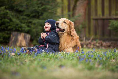 ただただ癒される♡ 犬猫と赤ちゃんの仲良し画像を紹介♪