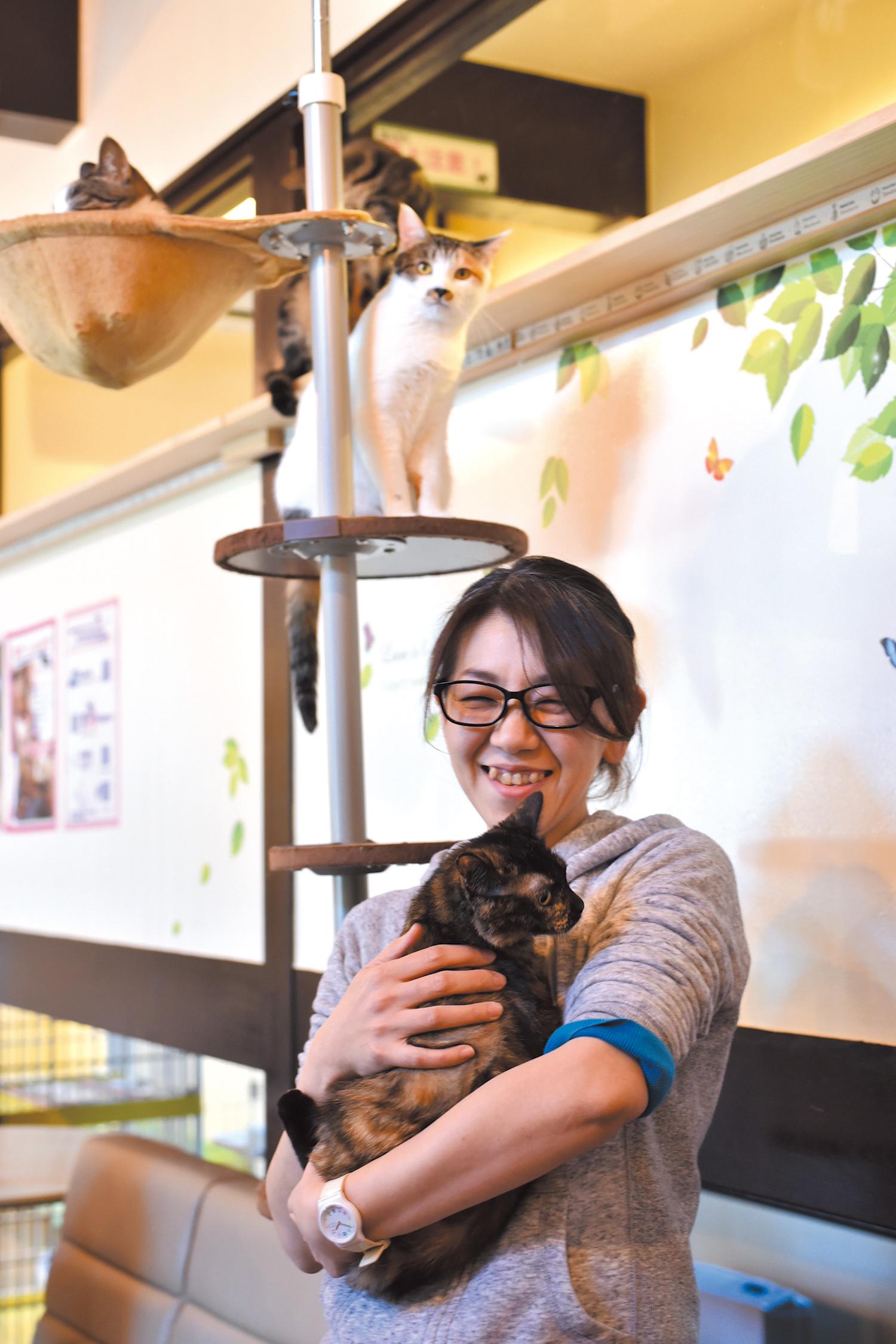 「猫たちに会いに来てくださいね」。愛情を注ぐ磯谷店長