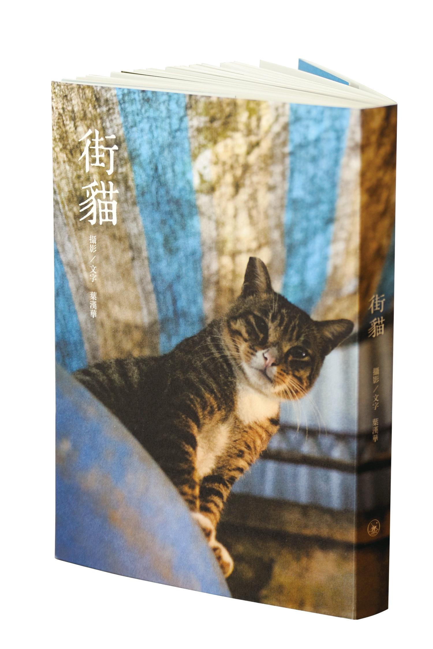 出版以来、本業より街猫のカメラマンとして注目を集めている
