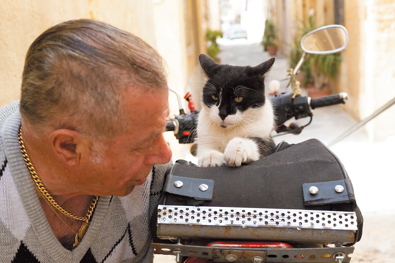 おじさんのバイクの上で爪を研ぎながら、お説教を聞いているトミー