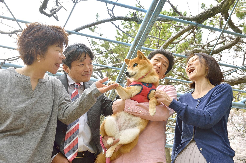 山田家とは家族ぐるみのお付き合いの伊藤さんご夫婦。ここあは三度の飯より伊藤のおじちゃんが好きなんだって! 大好きな人達に囲まれて幸せそうなここあなのです。