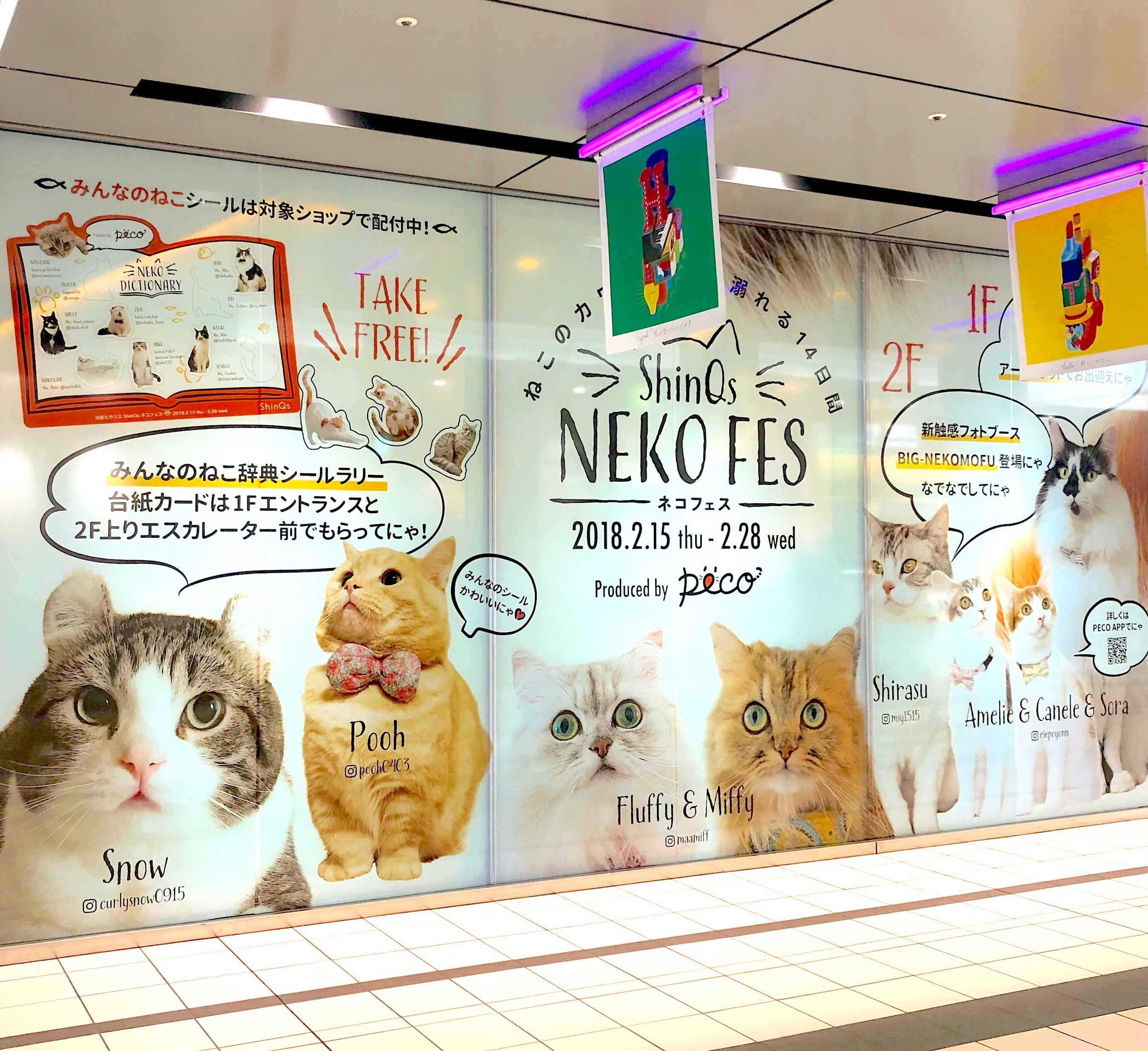 """『渋谷ヒカリエ ShinQs』が猫だらけ…♡ 2/28まで開催の""""ShinQs ネコフェス""""に潜入!"""