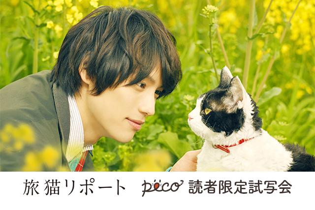 映画「旅猫リポート」×PECO Instagram投稿キャンペーン開催!