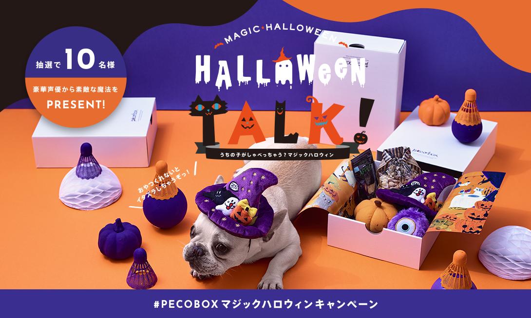 「ハロウィンの魔法で、うちの子が喋る?!」PECOBOXリニューアル記念、SNSキャンペーンを実施♪