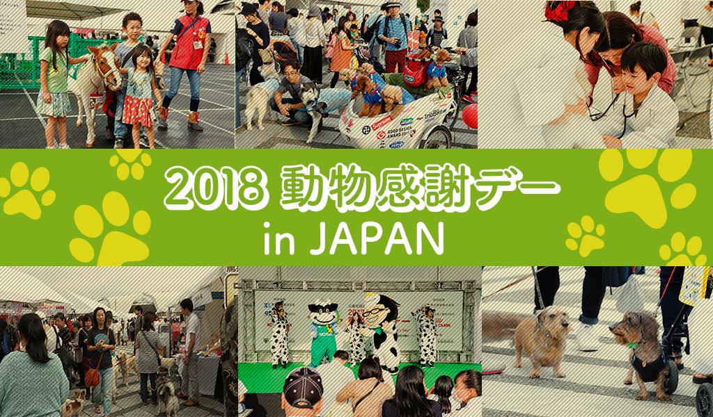 【12/1(土)イベント】発売前の「HDペットカメラ」を無料体験してプレゼントをもらおう!