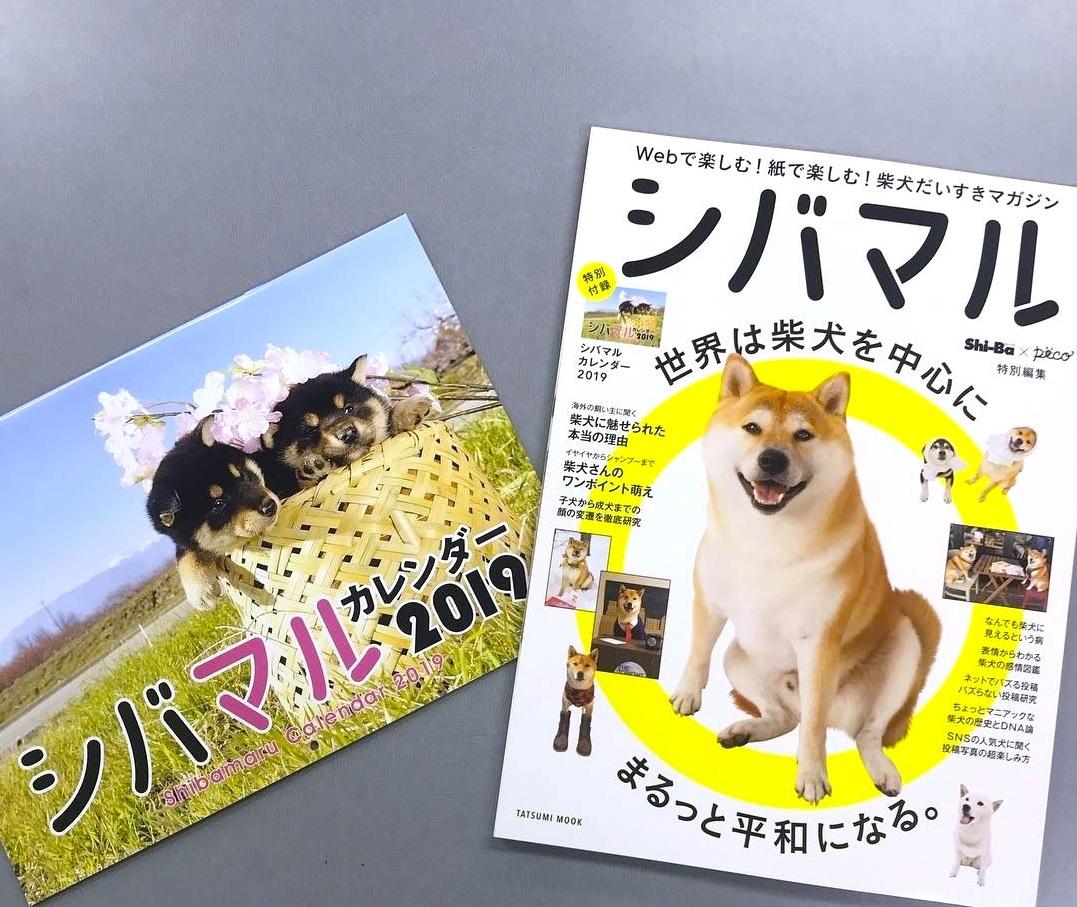 【Shi-Ba×PECO特別編集】全ページ柴づくし! 柴犬好きによる柴犬好きのための雑誌「シバマル」