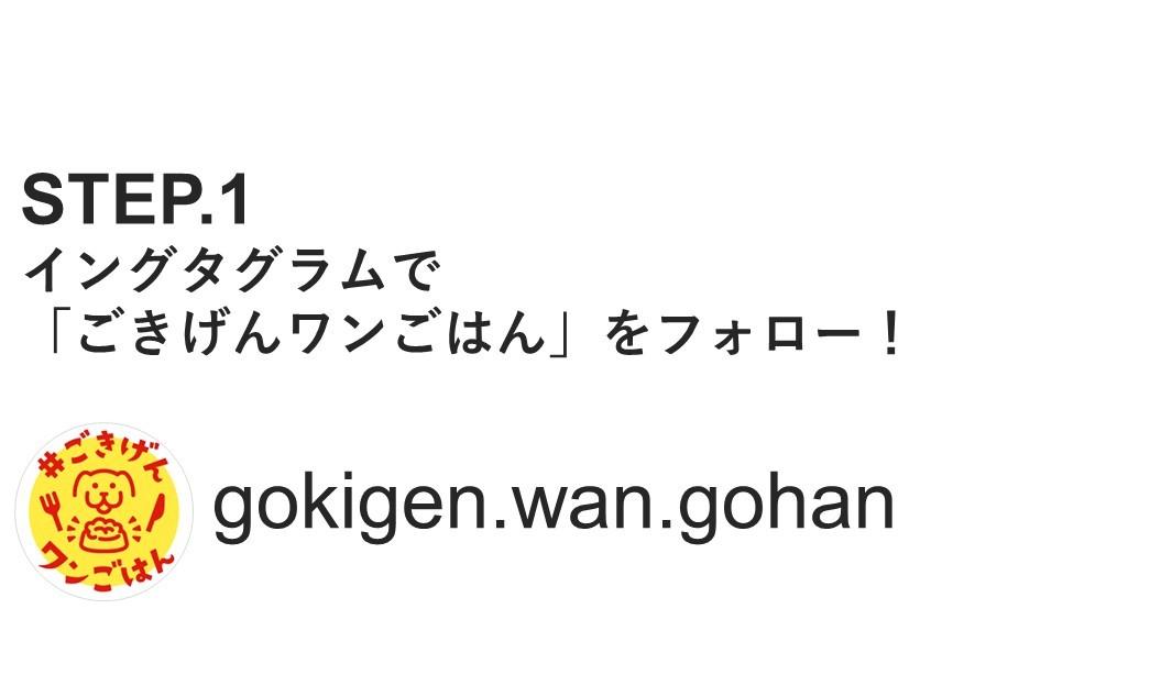 https://www.instagram.com/gokigen.wan.gohan/tagged/