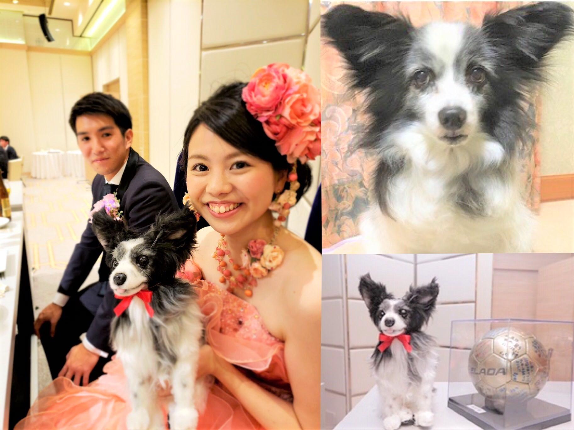 「結婚式を一緒に挙げようね」愛犬と花嫁の約束を『オーダーメイドぬいぐるみ』が叶える