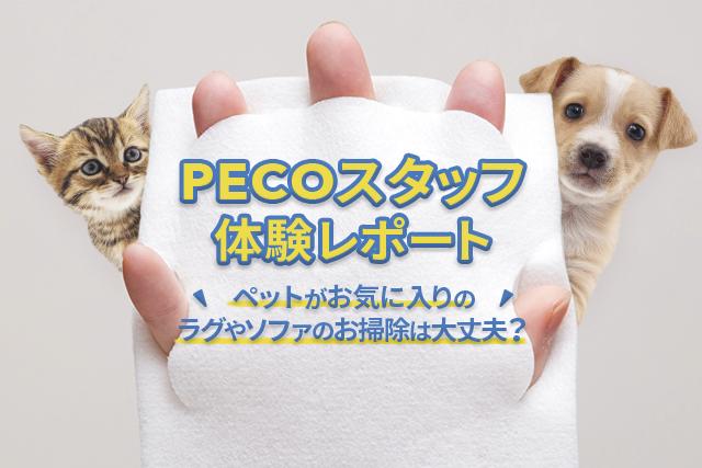 【PECOスタッフ体験レポート】ペットがお気に入りのラグやソファのお掃除は大丈夫?