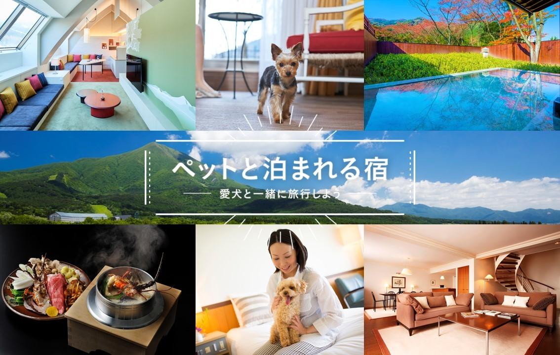 愛犬と一緒に旅行をしよう!ペットと泊まれる星野リゾートの宿泊施設をご紹介!