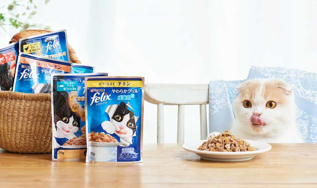 「食べ飽き」しないごはんでネコさんの食事を楽しく