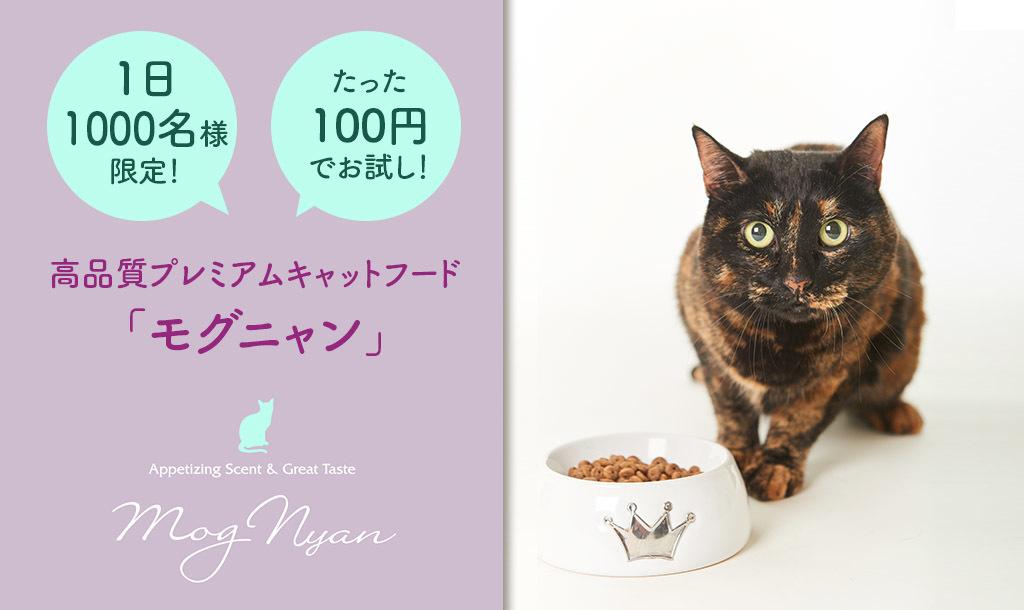 厳選素材を贅沢に使用! 安心と美味しさを追求したプレミアムフード「モグニャン」がたった100円で!