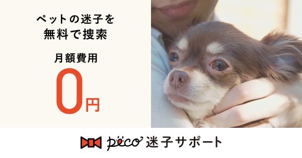 PECO迷子サポートでペットの迷子対策をしよう!