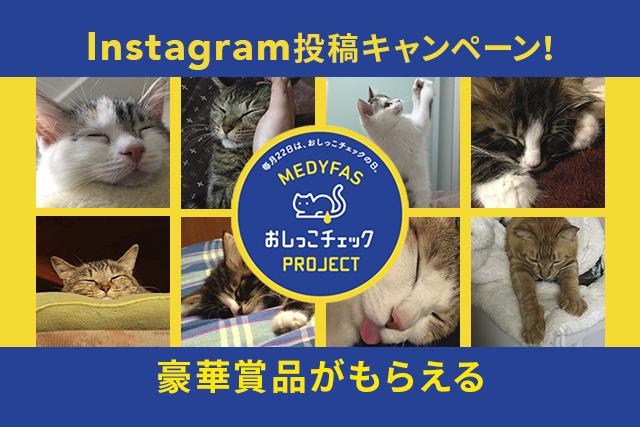 【豪華賞品がもらえる】Instagram投稿キャンペーン開催!