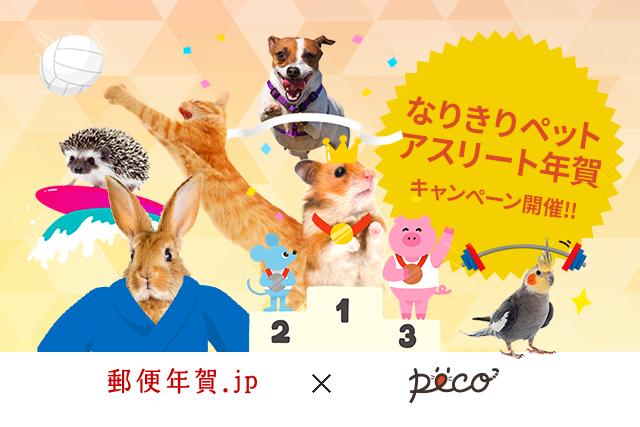 郵便年賀.jp×PECO「なりきりペットアスリート年賀」キャンペーン開催!