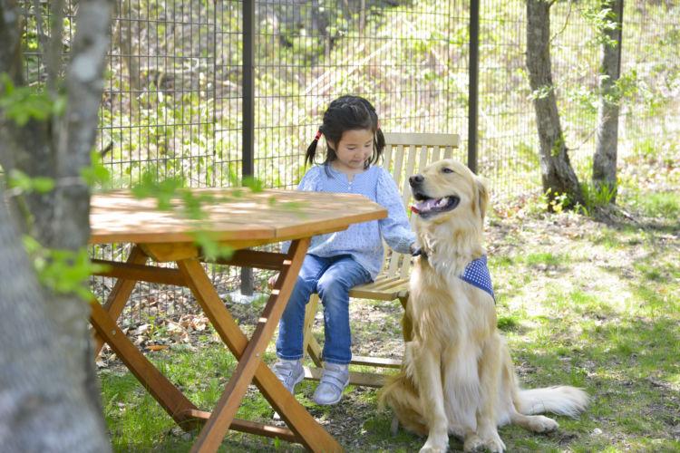 起伏のあるドッグランに大型犬も大満足!