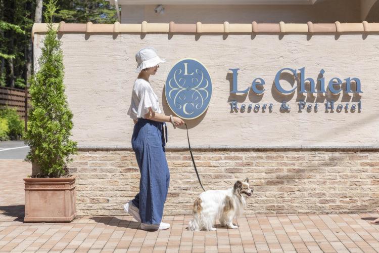 """【軽井沢】フルコースディナーも愛犬と一緒に。犬と過ごす楽しみ満載の大人気ホテル """"ルシアン旧軽井沢"""""""