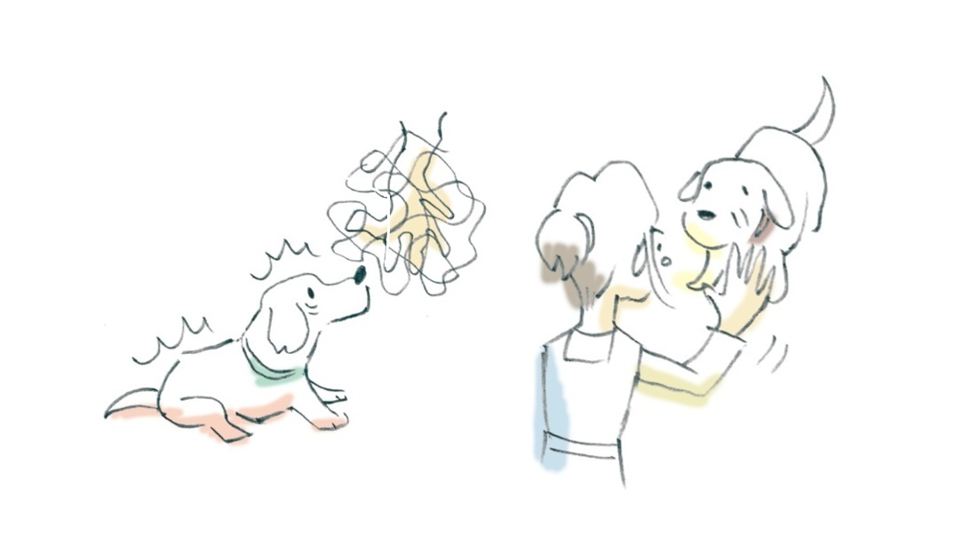 今さら聞けないSEMINAR vol.1 『ストレスなしの抱っこ & 触り方 & ケア』その4
