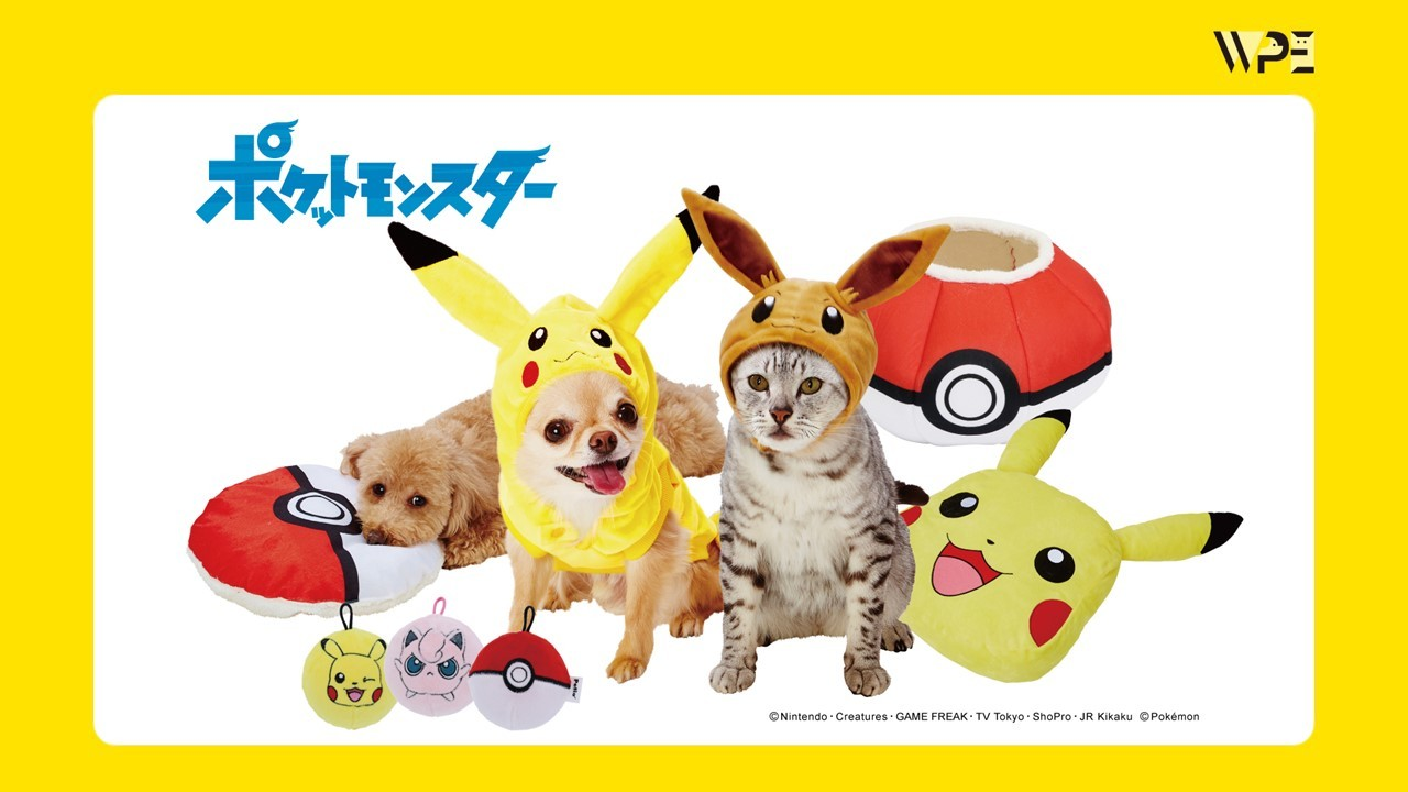 Petio | Pokémon ポケモン商品が新登場!!