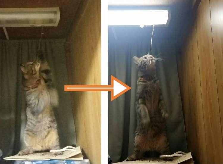 【怪現象の犯人は…】電気が勝手についたり消えたり→ ついに、その原因が明らかになる… ( ´∀`)!