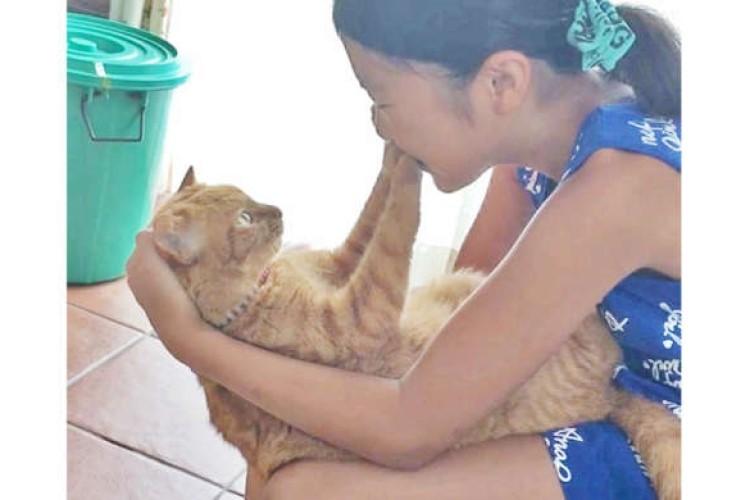 【鉄壁の守り】愛猫とチューしたい女の子♡ → ところが、ぷにぷにの肉球が何度もガードしてきて…(笑)