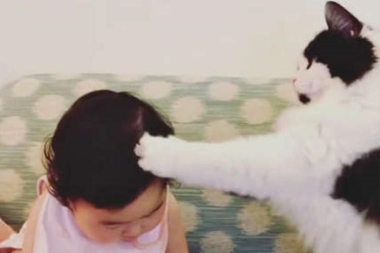 じゃれ合う時まったりする時…いつでも一緒な赤ちゃんとニャンコ。仲良しすぎる兄妹にほっこり♡