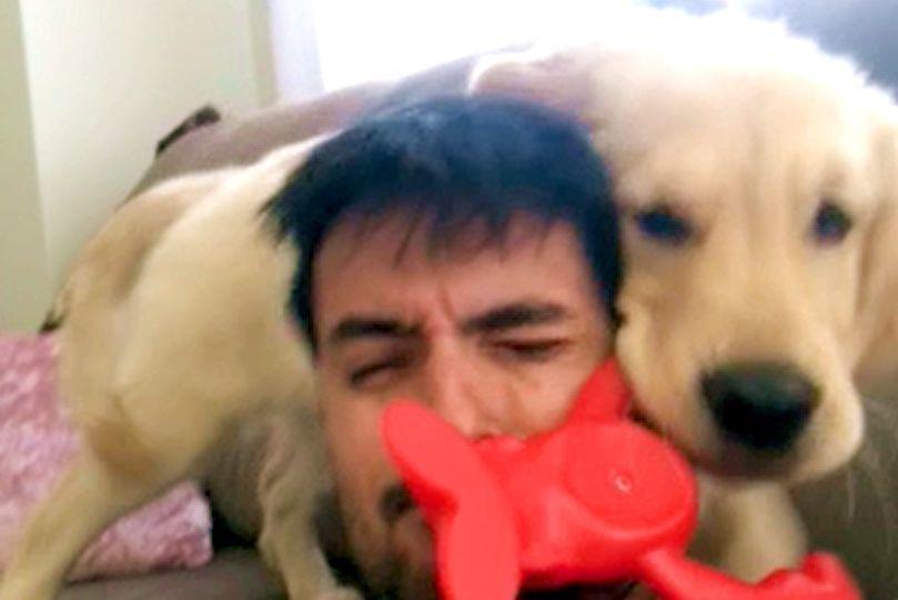 大好きなパパに構ってほしい子犬! 止まらない「遊んでアピール」が激しすぎるッ(*´ω`*)♡