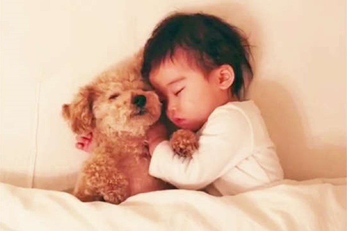 くっついてスヤスヤ眠るワンコと赤ちゃん。春のような穏やかな寝顔に、心から癒やされる♪ 31秒