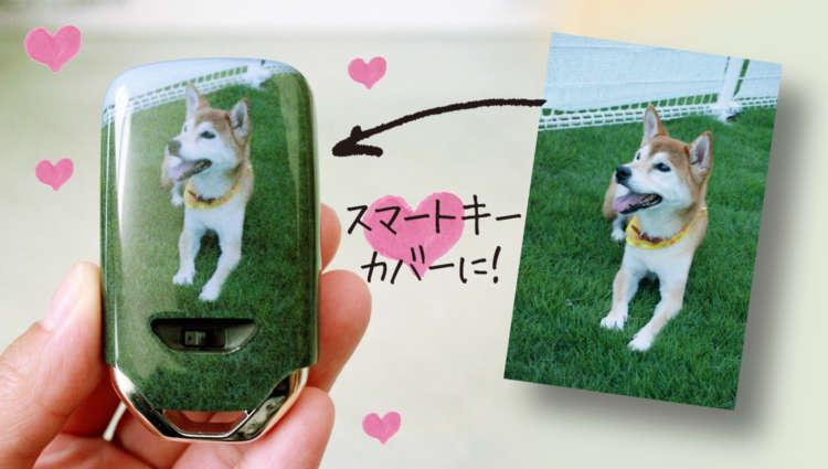 世界でたったひとつ! 愛犬の写真で作るオリジナルスマートキーカバー♪