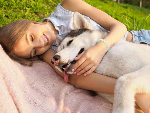 犬が発作を起こす。原因や考えられる病気、治療法、予防法について