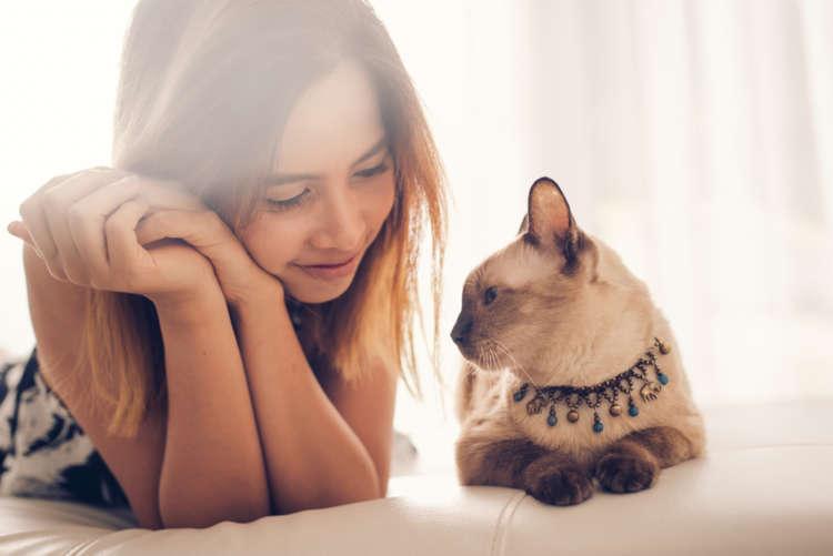 一人暮らしでも猫は飼える? 用意すべきもの、費用、注意点について
