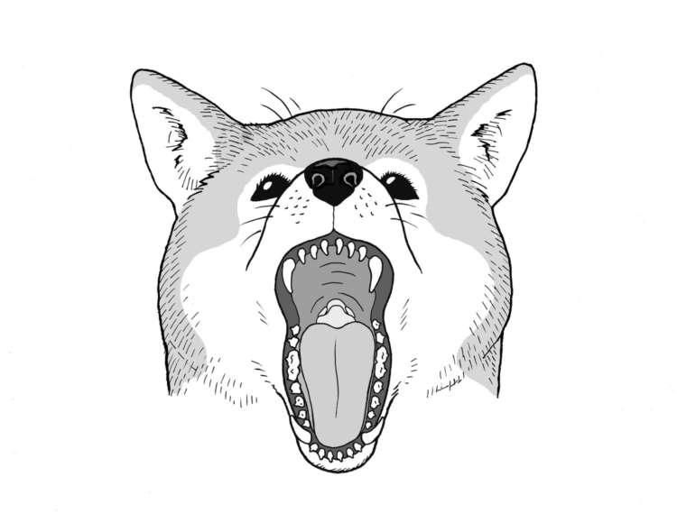 【よく聞く歯のトラブル以外も知っておきたい】口の中にできる病気