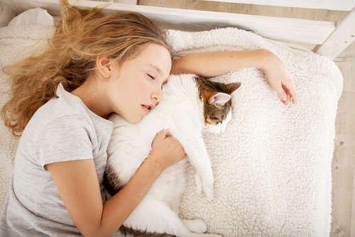 寝相から見る猫の心理。寝相が悪い時の対処法は?