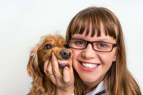 【獣医師監修】犬の虫歯|考えられる原因や症状、治療法と予防法について