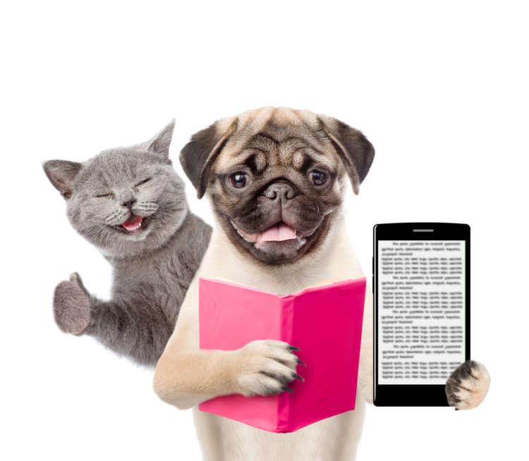 楽しすぎて思わずハマってしまう! 犬好き&猫好きのあなたにオススメの、無料アプリ8選を紹介
