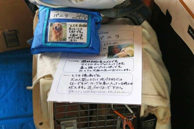 人とペットの幸せな共生を目指して…日本愛玩動物協会の取り組み
