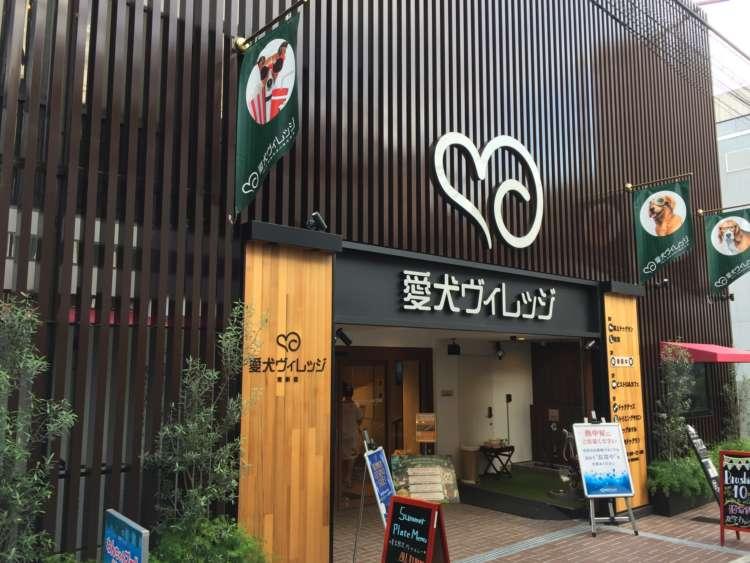 東新宿にNEWオープン! 愛犬も飼い主もハッピーになれる複合施設 「愛犬ヴィレッジ」