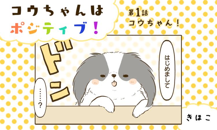 第1話:コウちゃん!
